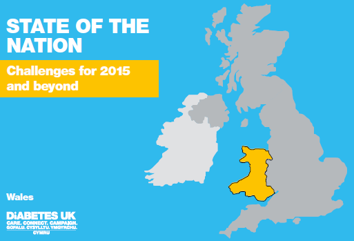 State%20of%20the%20Nation%20WALES%202015%20front%20cover.png